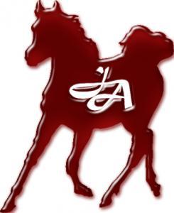 Jason Arabians